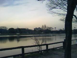 image/torihitori-2009-02-19T16:59:13-1.JPG